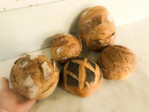 Boulangerie Aux Petites Mains BASE TRADITION Boules tradition